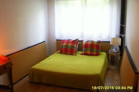 Large room in quiet 2-room flat - Paris