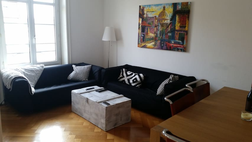 Large 92sqm Apartment-Basel - Sleeps 2 to 4 people - Basilea - Appartamento