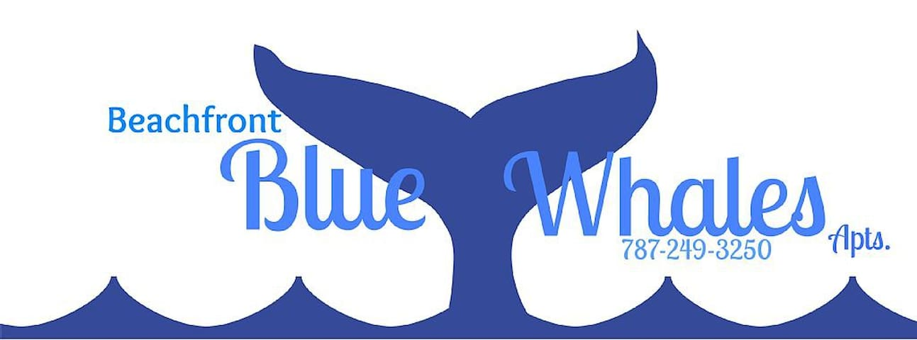 """BLUE WHALES""  HOUSE - Añasco - Hus"