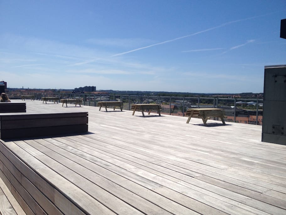 The common shared 300 kvm. Roof terrace!