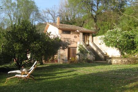 Rustic farmhouse with pool - Rieti
