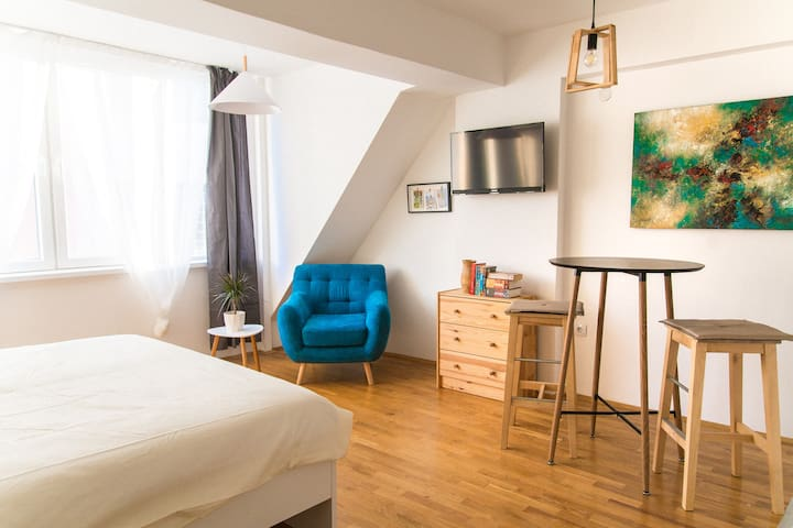 Bright & Light Apartment in the Bohemian Quarter