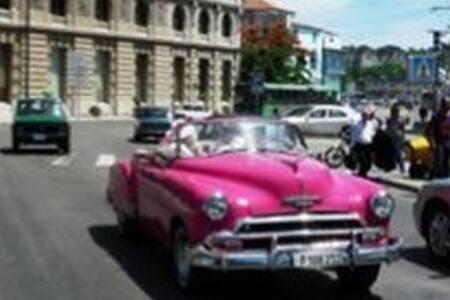 Finca del Medio Sancti Spíritus-Cuba. - Taguasco - Přírodní / eko chata