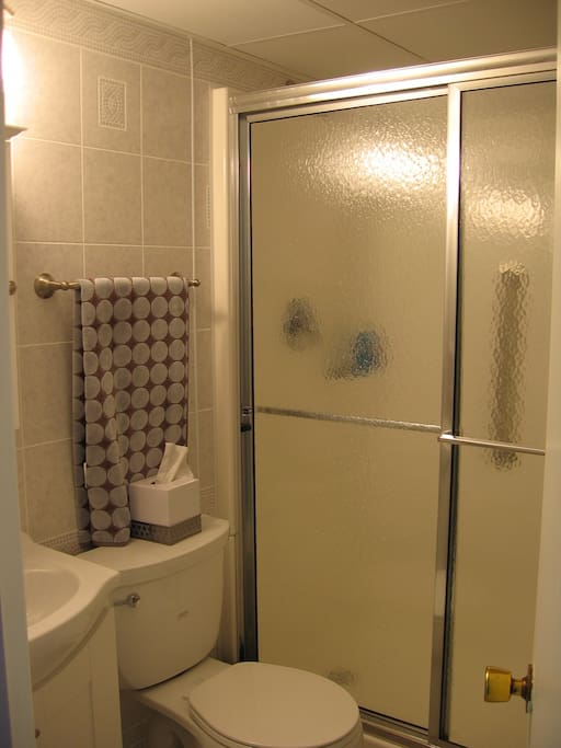 Handicap Bathroom with step in Shower