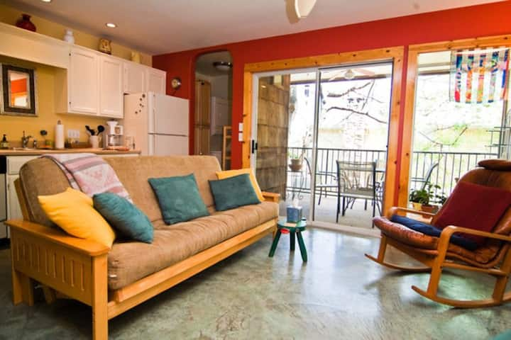 Beautiful Zilker Park Condo next to Downtown!