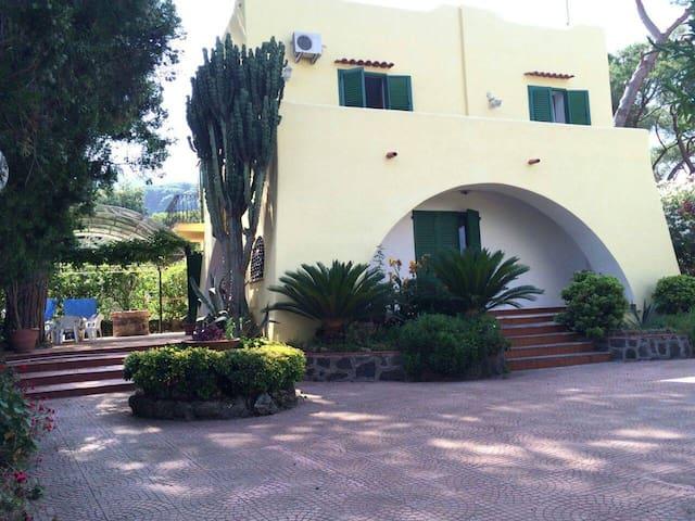 Villa immersa nel verde (1km dal mare)