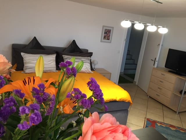 Chambre lit King-Size vue sur lac - Blonay - Bed & Breakfast