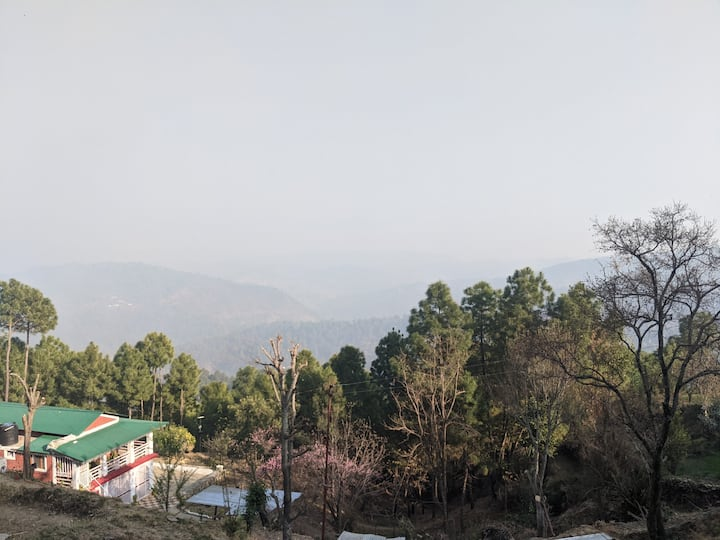 Blossom Homestay - Large 1 BHK with Mountain View