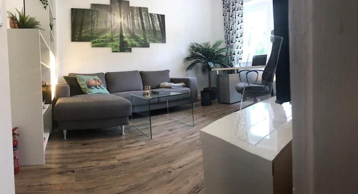 Free Netflix & Wifi | Nice Apartment near Stadium