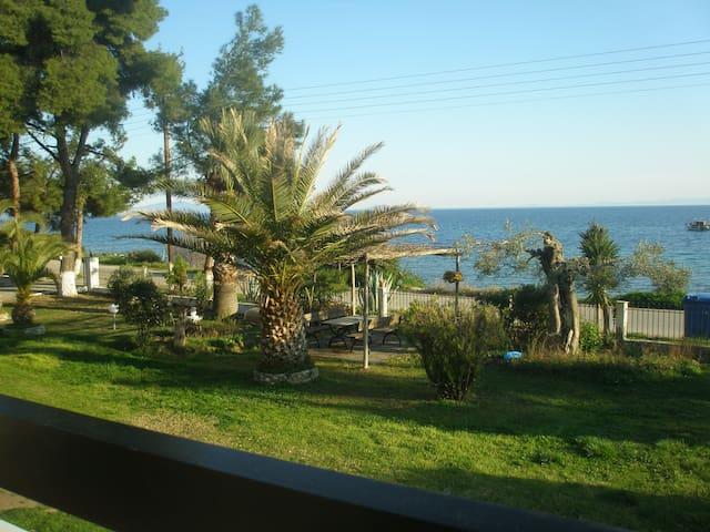 Metamorphosis - Halkidiki Apartment on the beach!