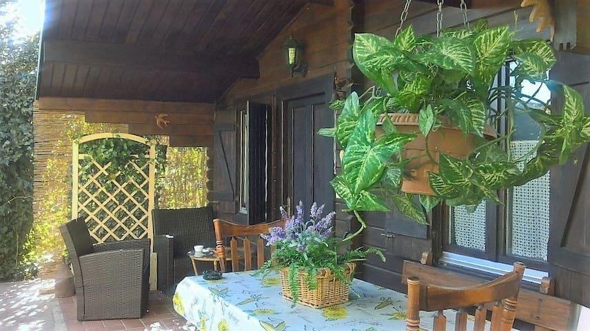 Chalet il Girasole - montignoso - Casa de campo