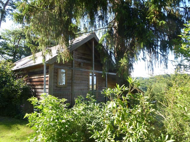 Emma's House - Presteigne - Chalet