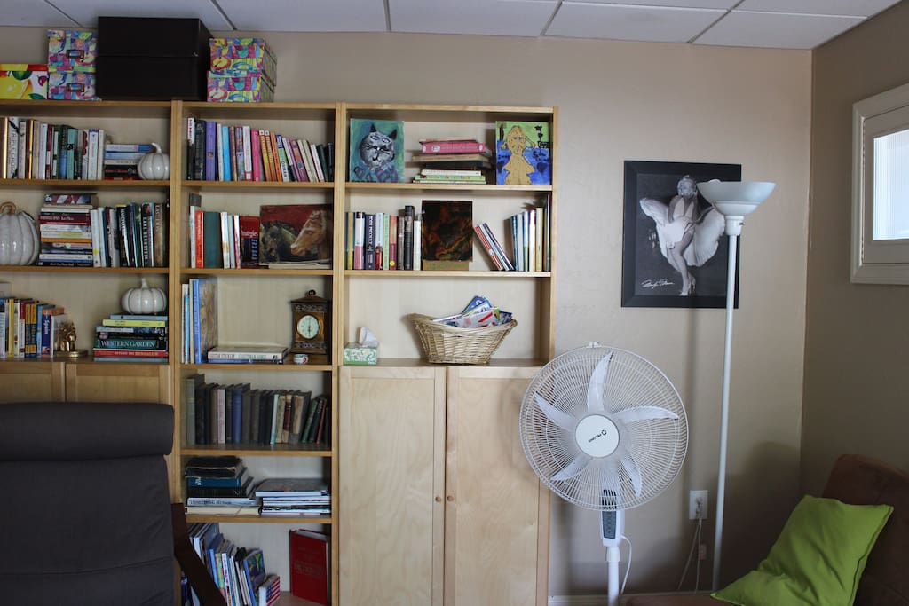 book shelf with many interesting books to read