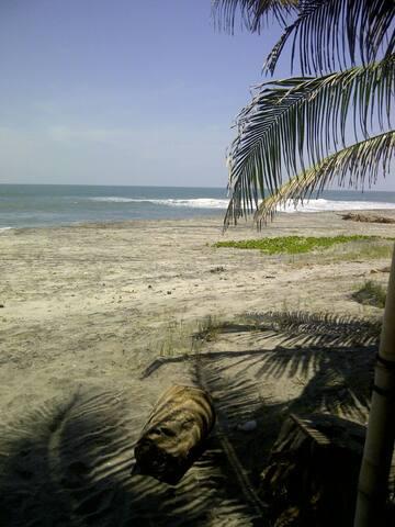 Estamos frente a la playa