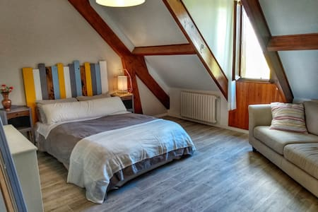Airy rooms in Fontainebleau Forest