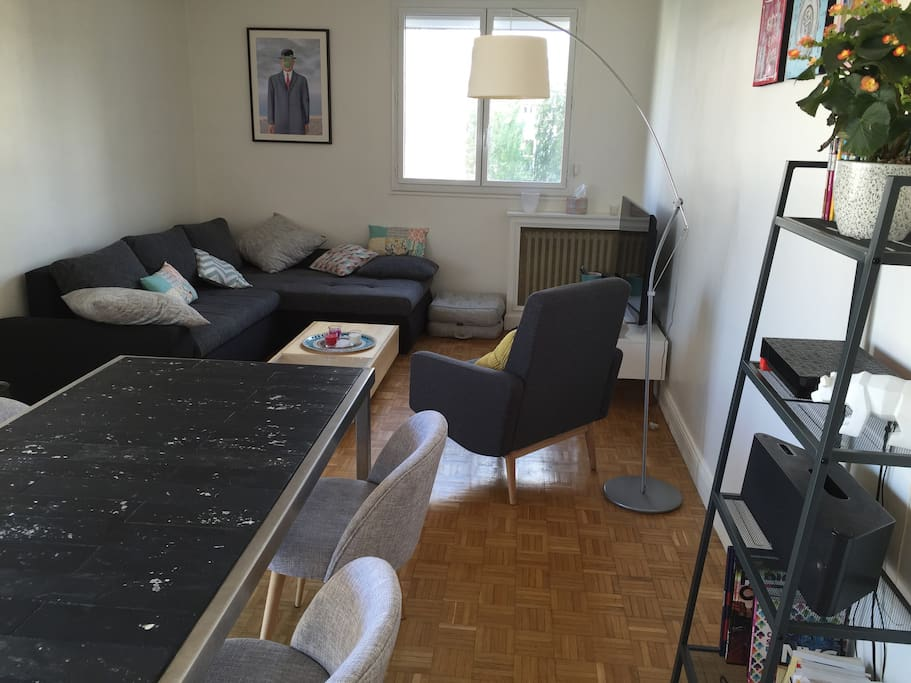 Salon avec grand canapé - lit