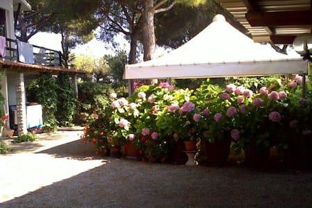 Trilocale in villa a 450mt dal mare - Lacona - Villa