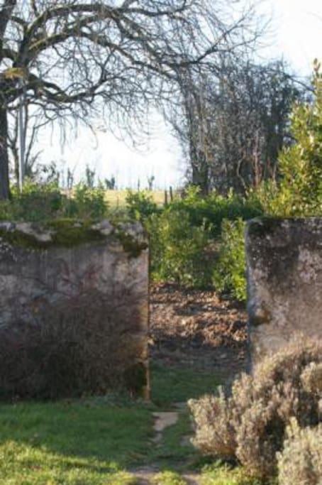 Le Chêne - tuin