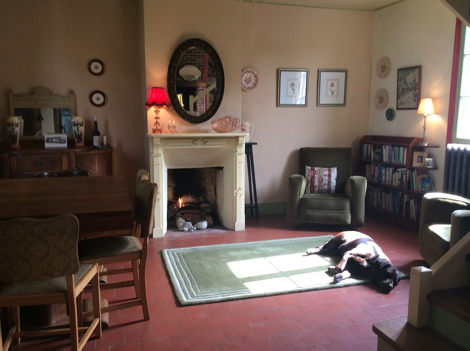 Dining room (dog not included!)