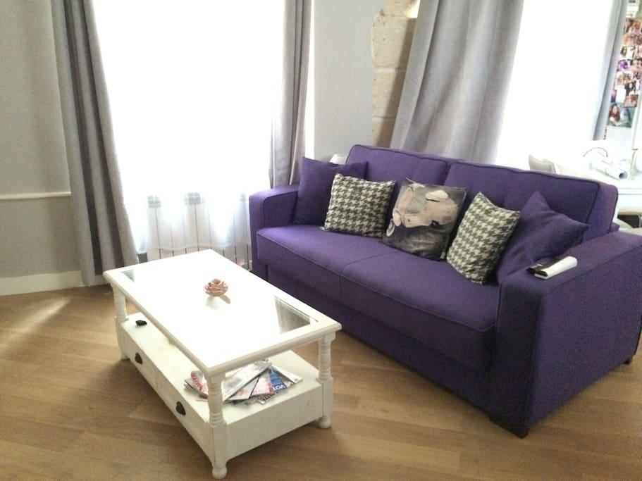 Salon avec lit convertible 2 places (vrai lit de qualité)