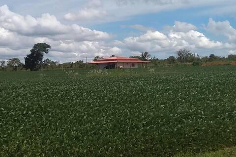 Casa no campo, privativa, a poucos km de Brasília