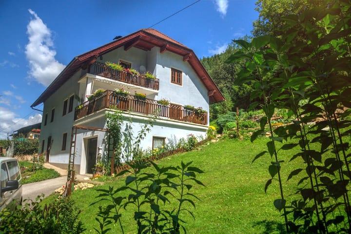 Rotherhütte