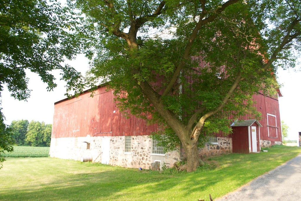 Our barn