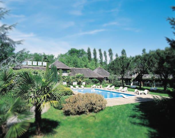 Cocon verdure piscine bois