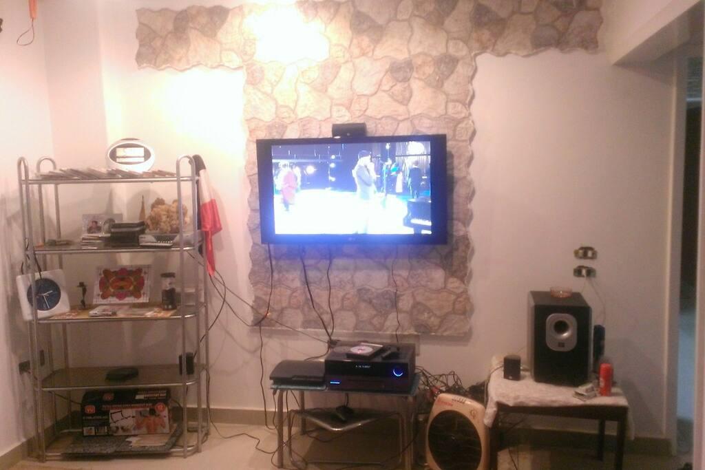 Living room with plasma screen