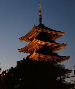 KYOTO Toji temple south gate-和室 TATAMI - 京都