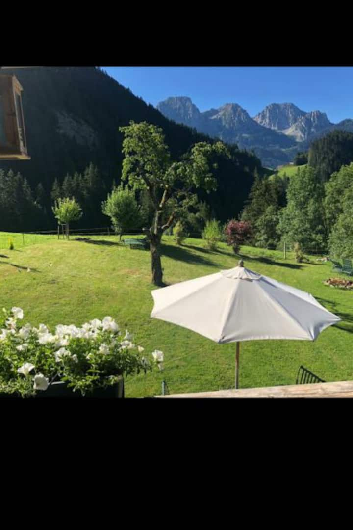 Single Room in Alpine paradise near Gstaad
