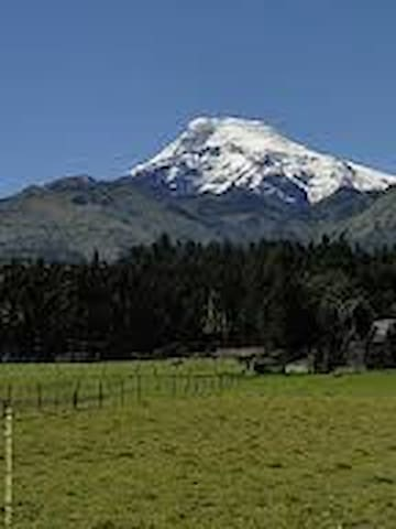 Cozy Country House - Cayambe/Tupigachi - Bed & Breakfast