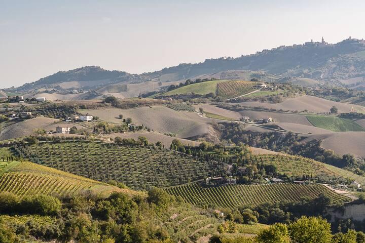 view form Villa Contessina