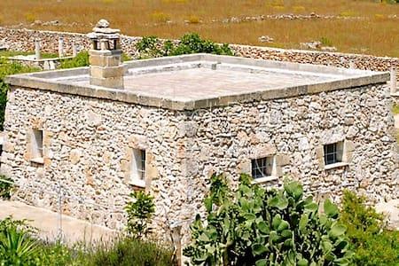 La Capperaia pajara con piscina +AC - Spongano - Hus