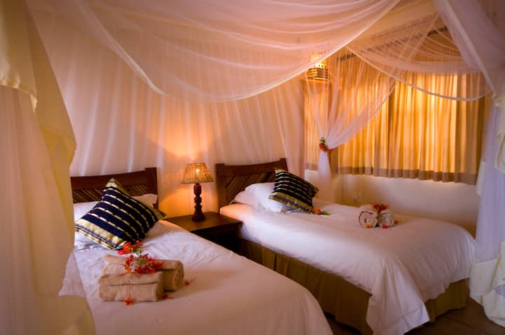 Exclusively yours - Beautiful Acacia Twin Room