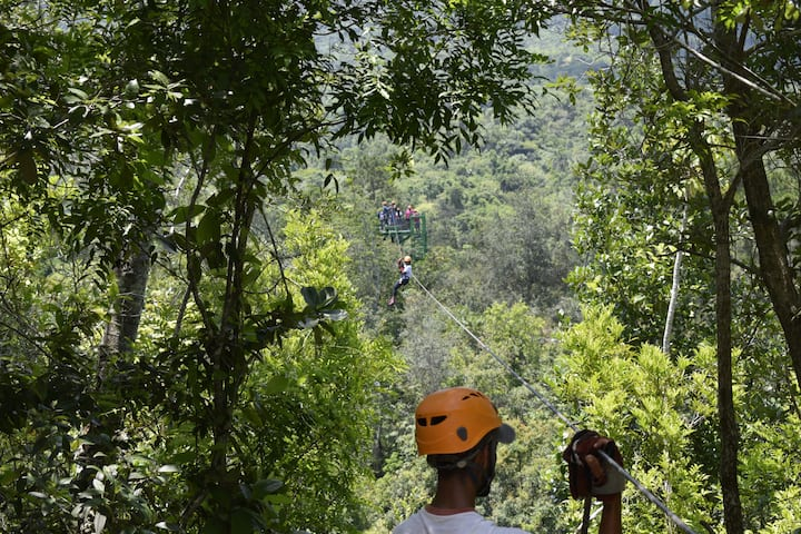 Zip your way through a Viñales forest!