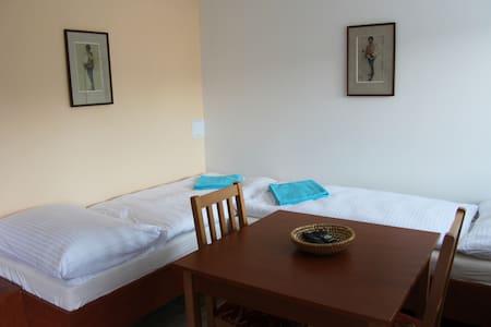 Vila Aneta - double room - Luhačovice