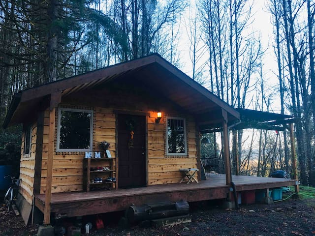 """BIG"" Tiny House with Columbia River views"