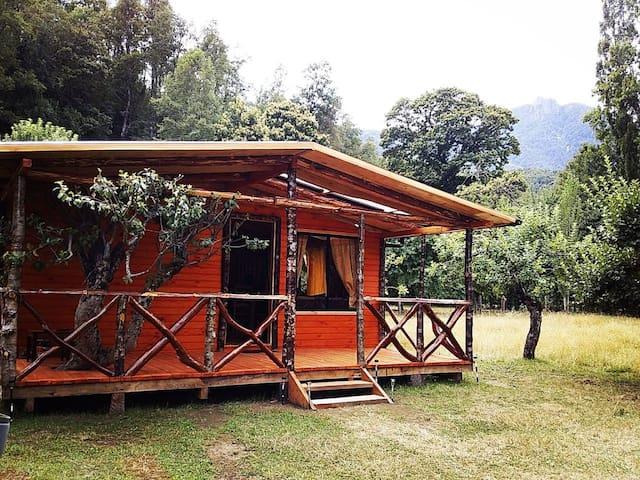 Camping y cabaña Garove