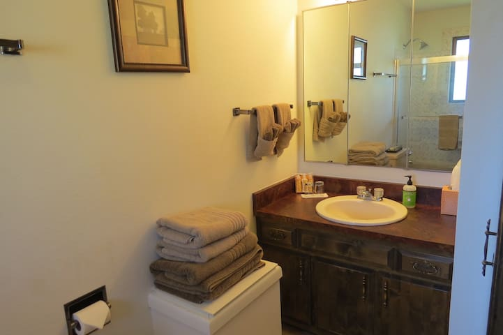 The en suite bathroom sink and mirror.