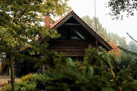 Cozy Wooden Cabins