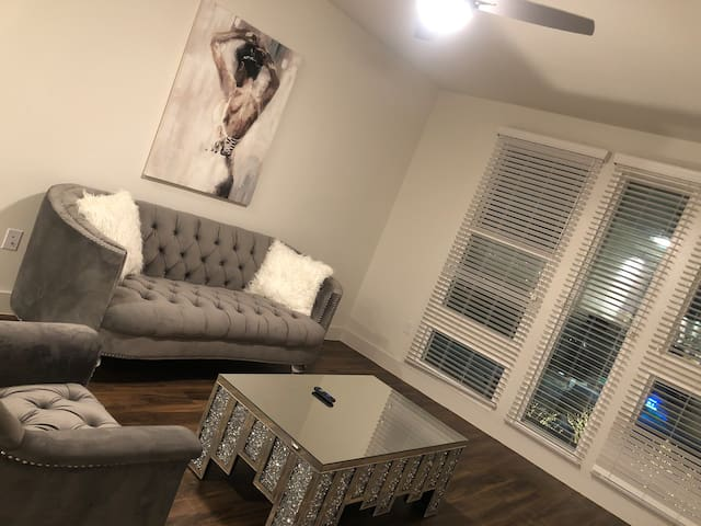 STYLISH MODERN APARTMENT IN DOWNTOWN Dallas