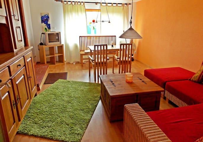 moderne Ferienwohnung für 2-5 Personen - Todtmoos - Apartment
