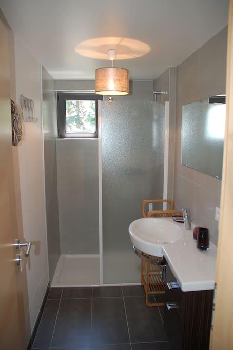 Salle de bain avec douche et lavabo