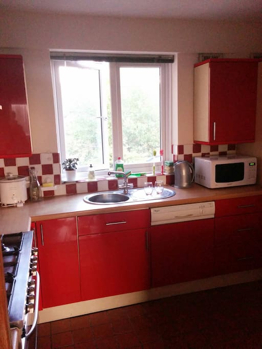 Large kitchen with microwave & dishwasher.