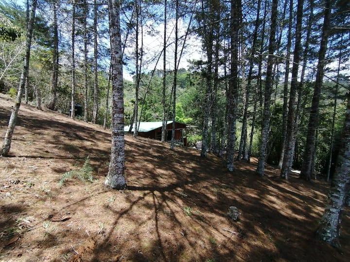 Cabaña  Cerro Verde
