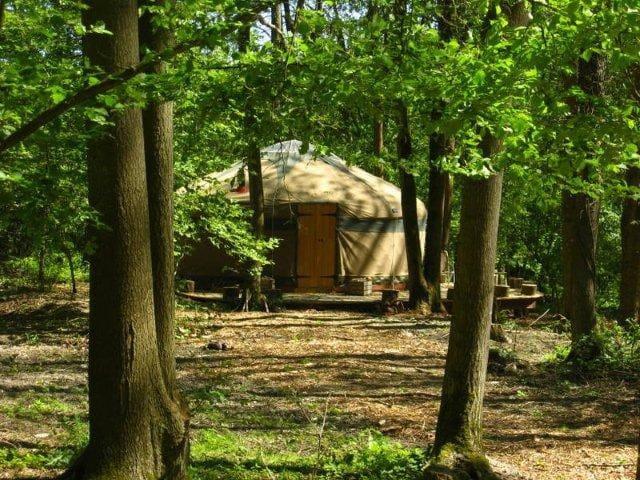 Savannah Yurt - East Grinstead - Iurta
