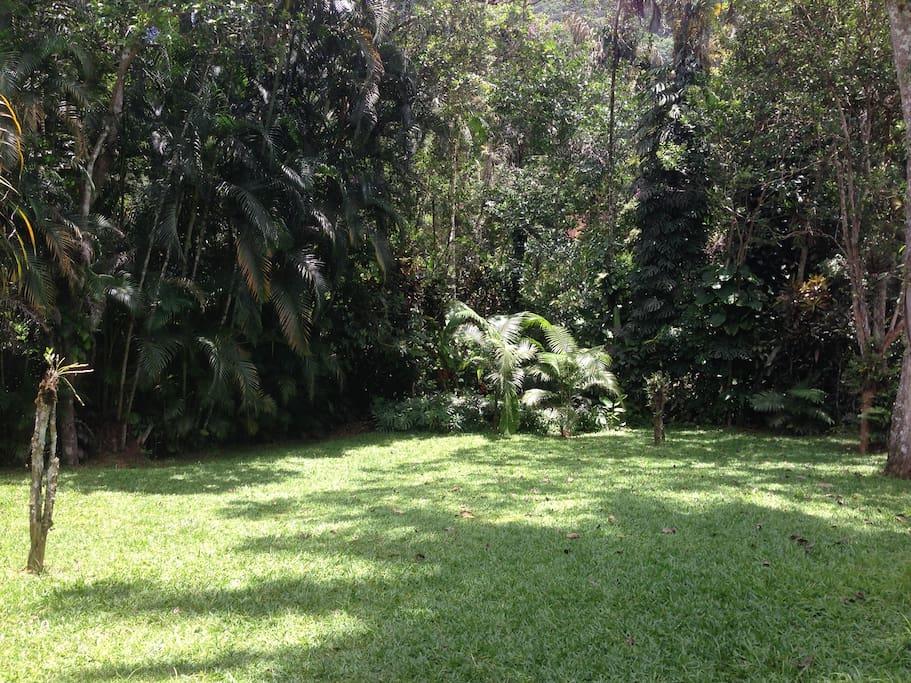 Jardim/gramado lateral