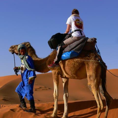 Berber Tents - Hassilabied - Telt
