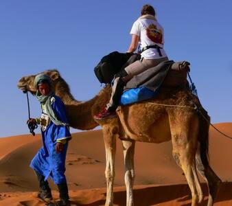 Berber Tents - Hassilabied - Zelt